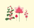 Vector simple, colorful flowers in a flat style