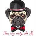 Vector sketch cute dog pug breed
