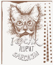 Vector sketch of a stylized kitten s face with eyeglasses and text i speak fluent sarcasm hand drawn cute fluffy cat Stock Images