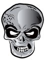 Vector skull isolate on white Stock Photography