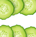 Vector slice juicy cucumber on white background.Green f