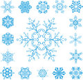 Vector Snowflakes Stock Images
