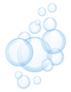 Vector soap bubbles Stock Images
