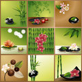 Vector Spa Collage Royalty Free Stock Photos