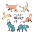 Vector space set with cosmic animals. Hand drawn star animals in hipster style. Royalty Free Stock Photo