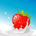 Vector splash of milk with big strawberry illustration blue background Royalty Free Stock Image