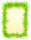 Vector spring frame with ladybugs Royalty Free Stock Photo