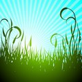Vector spring illustration with green flower Stock Image