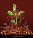 Vector sprout grows from a pile of coffee Royalty Free Stock Photos