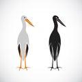 Vector of stork design.