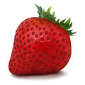 Vector strawberry juicy red isolated on white background Royalty Free Stock Photography
