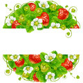 Vector strawberry round frame. Circle composition of ripe red berries