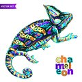 Vector stylized multi coloured Chameleon. Hand Drawn Reptile vector illustration in doodle style for tattoo or print