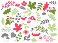 Vector Summer Forest Set with Strawberries, Mushrooms, Leaves and Flowers