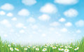 Vector summer landscape. Royalty Free Stock Photo