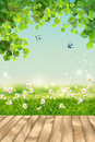 Vector Summer landscape Royalty Free Stock Photo