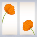 Vector templates poppies graphic designs easter or invitation card Stock Photos
