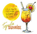 Vector tequila sunrise hand drawn picture of glass Royalty Free Stock Photography