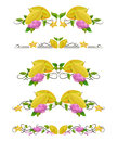Vector text dividers with carambola and flower