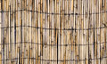 Vector texture of wall of bound bamboo