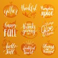 Vector Thanksgiving lettering with illustrations for invitations or festive greeting cards. Handwritten calligraphy set.