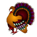Vector Thanksgiving turkey bird