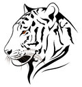 Vector tiger Royalty Free Stock Photography