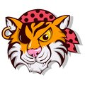 Vector Tiger pirate Royalty Free Stock Photo