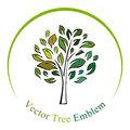 Vector tree emblem isolated on white Royalty Free Stock Images