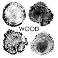 Vector tree rings background.Conceptual graphics.