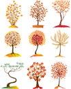 Vector Tree seasonal Royalty Free Stock Photo