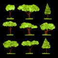 Vector Tree stylized set or collection.