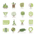Vector tree wood oak design element badge modern forest label and templates nature label for your business eco graphic Royalty Free Stock Photo