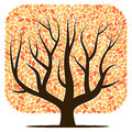 Vector tree with yellow leaves