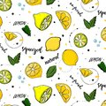 Vector trendy summer decoration. Lemon fruit drawing with mint leaves. Fresh juicy natural vegetarian sweet texture