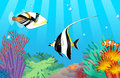 Vector tropical fish drawing of Royalty Free Stock Image