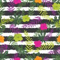 Vector tropical flowers and fern leaves on stripes background. Suitable for gift wrap, textile and wallpaper