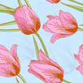 Vector tulips sealess background. Stock Photo