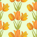 Vector tulips sealess background. Royalty Free Stock Photography