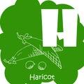 Vector vegetable alphabet for education. Illustration for kids. Letter H for Haricot