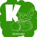 Vector vegetable alphabet for education. Illustration for kids. Letter K for Kohlrabi.