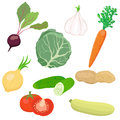 Vector vegetable set eps effects Stock Photos