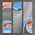 Vector Vertical Banners for Boxing