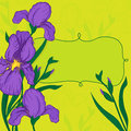 Vector vignette iris flowers Royalty Free Stock Photography
