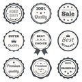 Vector vintage badges. Best choice, premium quality, highest qua