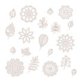 Vector vintage floral design elements set in mono line style Royalty Free Stock Photo