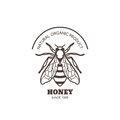 Vector vintage honey label design. Outline honeybee logo or emblem. Linear bee isolated on white background.