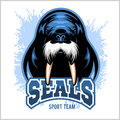 Vector Walrus logo template for sport teams, business etc. Royalty Free Stock Photo