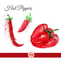 Vector watercolor set of bright red chili peppers