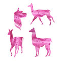 Vector watercolor silhouettes of a lama Royalty Free Stock Photo